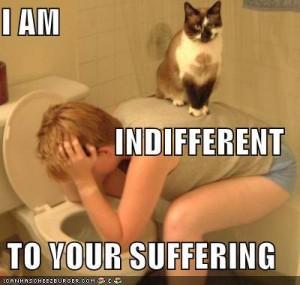 indifferent มันแปลว่าอะไรกันแน่!!